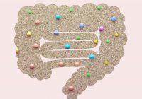 【BIメールマガジン Vol.277】腸内細菌によって人格も体格も変わる