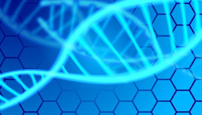 【BIメールマガジン Vol.267】人の遺伝情報記憶はDNAではない?