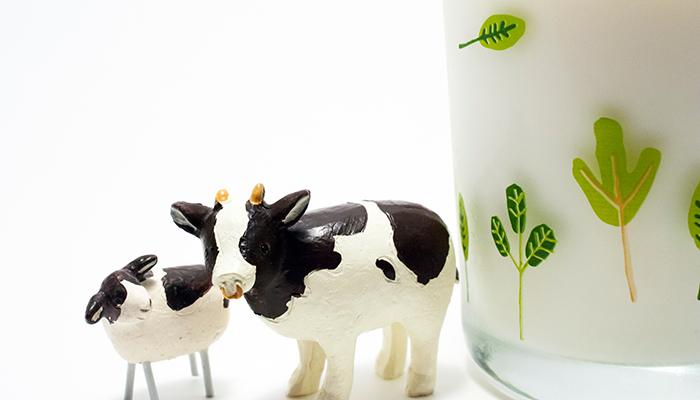 【Vol.038】牛乳の「ウワサ」について